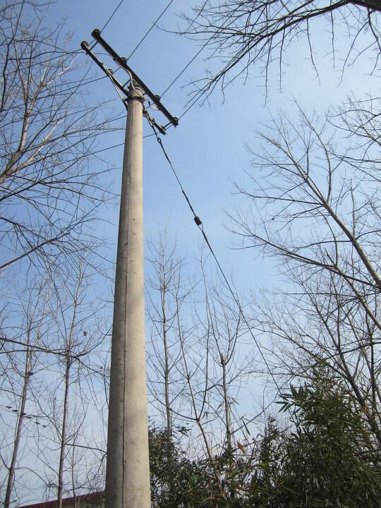 no.43-电线杆图片