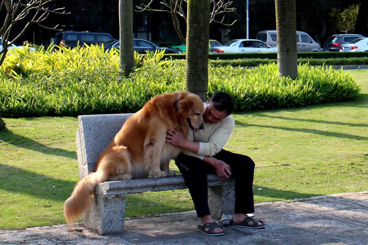 鲁一鲁人与动物_只要有爱心,人与人,人与动物都能和睦相处.