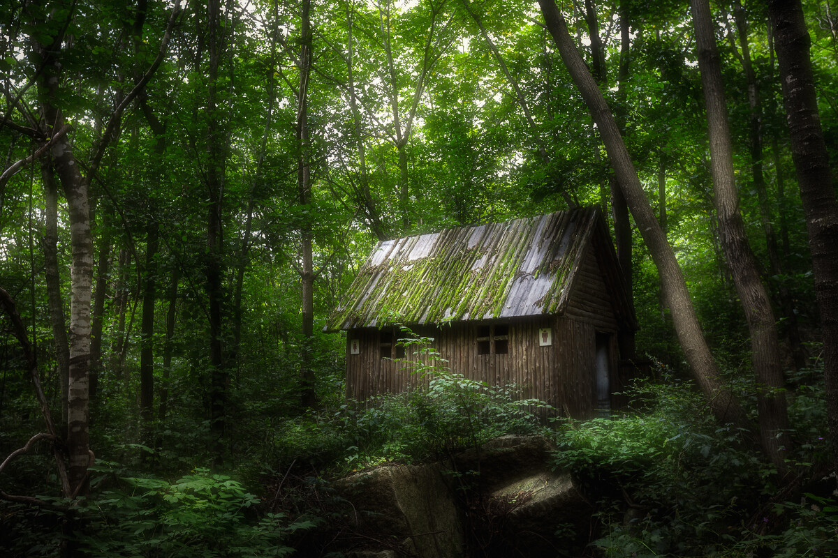 摄于丹东天华山森林公园,厕所与大自然的完美融合.图片
