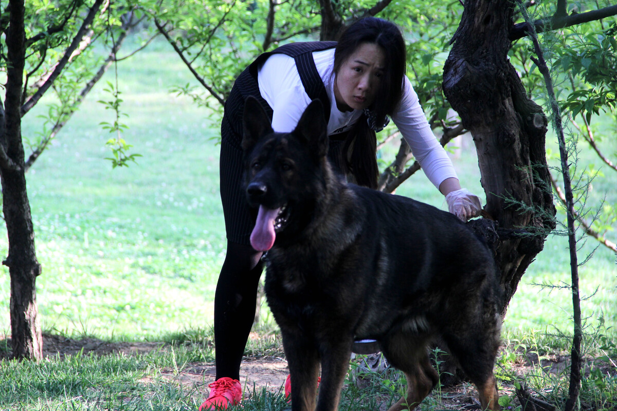 大黑狗自拍表情包分享展示图片