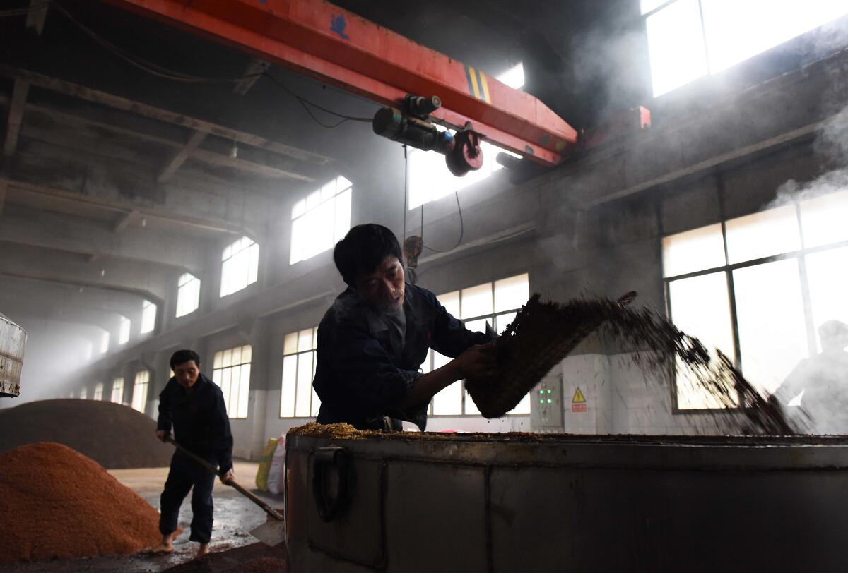 酒厂_12月20日,贵州省仁怀市茅台镇内一家酒厂,工人正在将拌入酒曲的当地