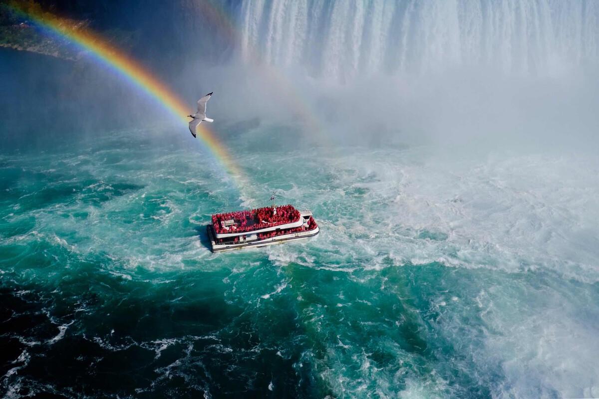 飞越彩虹生命体征的v生命备课操作图片