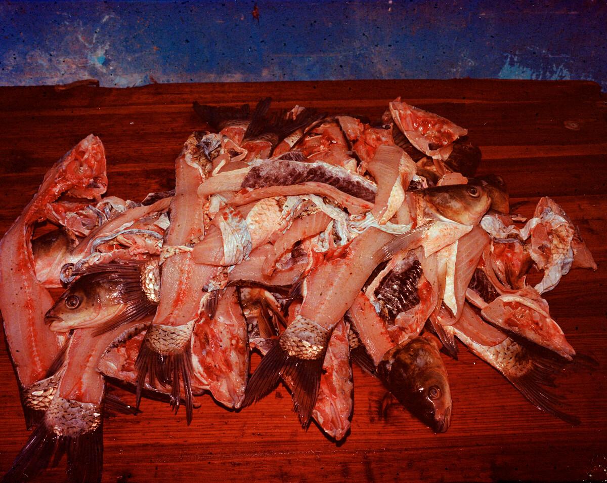 2014年,为喜事准备的鱼,肉已经用于做鱼肉丸,剩下的鱼骨用于油炸。Mamiya 7II + 85/4,过期柯达120负片。