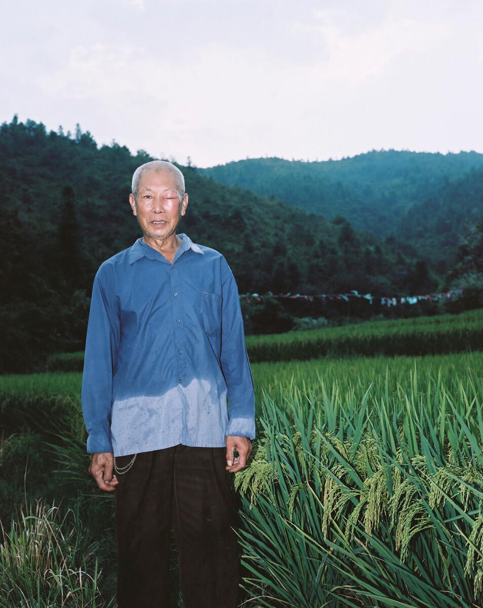 2014年,被野蜜蜂蛰到的村民站在自己的水稻田旁。Mamiya 7II + 85/4,柯达120负片。
