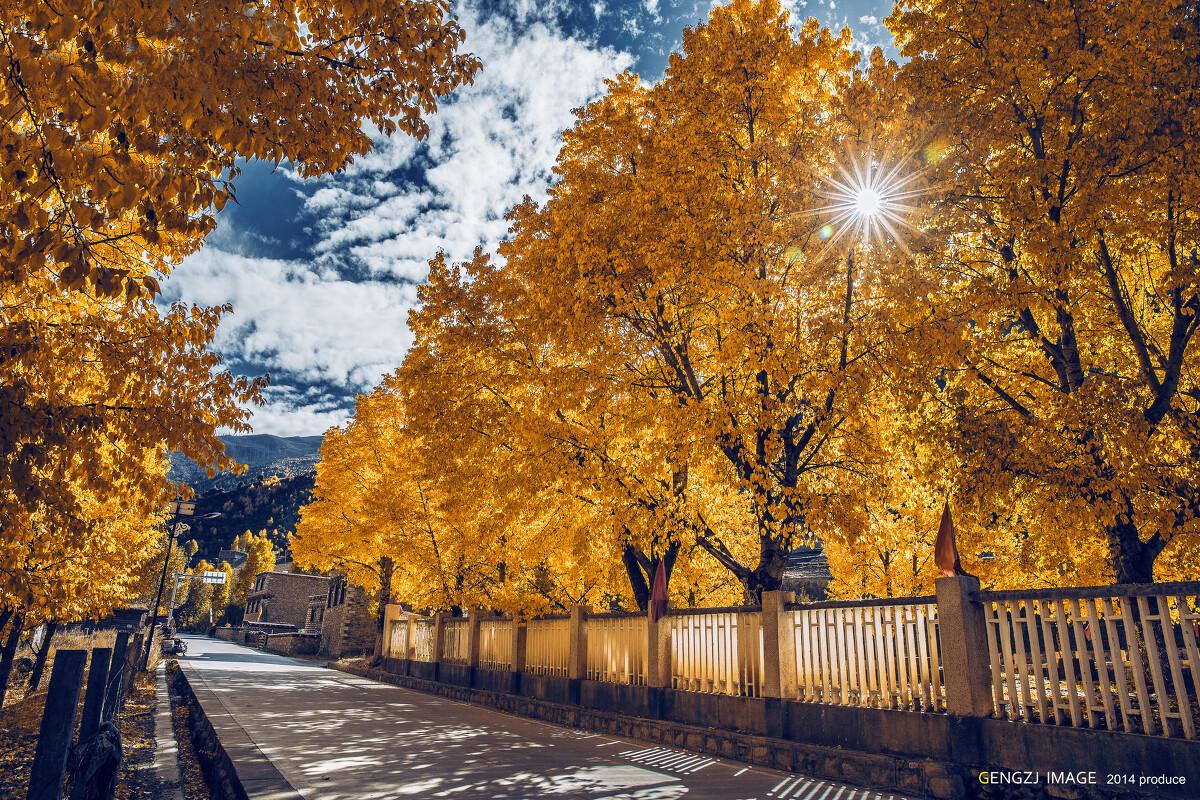从四川到西藏,这一路,我们一直觉得新都桥算是最美的