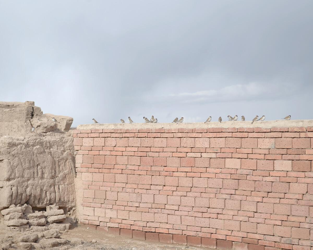2014年5月 内蒙古乌兰察布 新建的墙