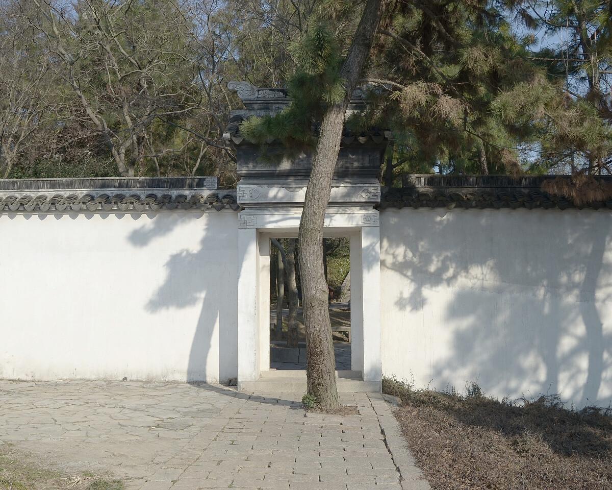 2015年2月 江苏吴江 挡门的树