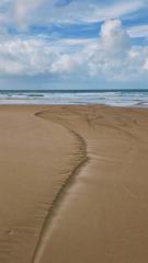 海浪拾荒的印记