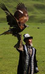 草原养鹰人
