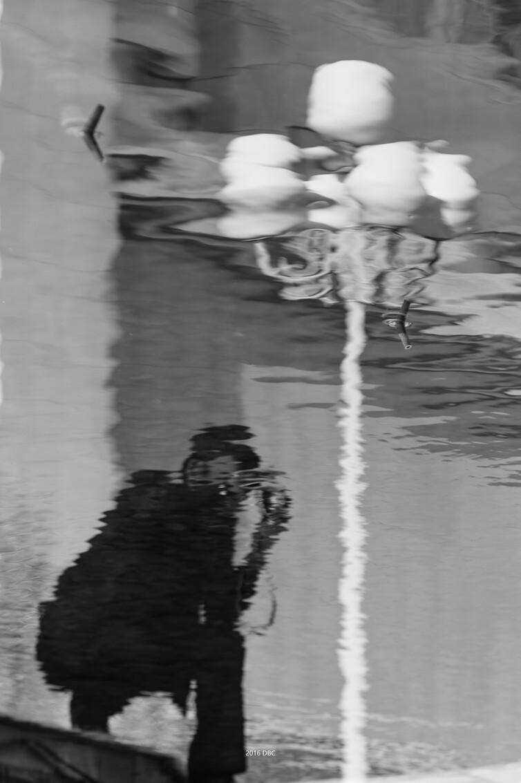 水韵(倒影专题) - 倒影 - 感冒发烧 - 图虫摄影网