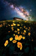 《琼库石台的星辰》