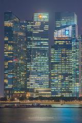 城市电路板