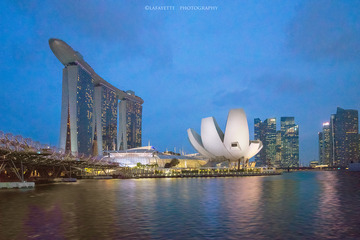Marina bay sands and flower building