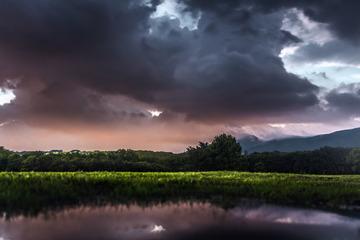 紫金山下的风暴