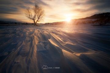 那拉提雪原