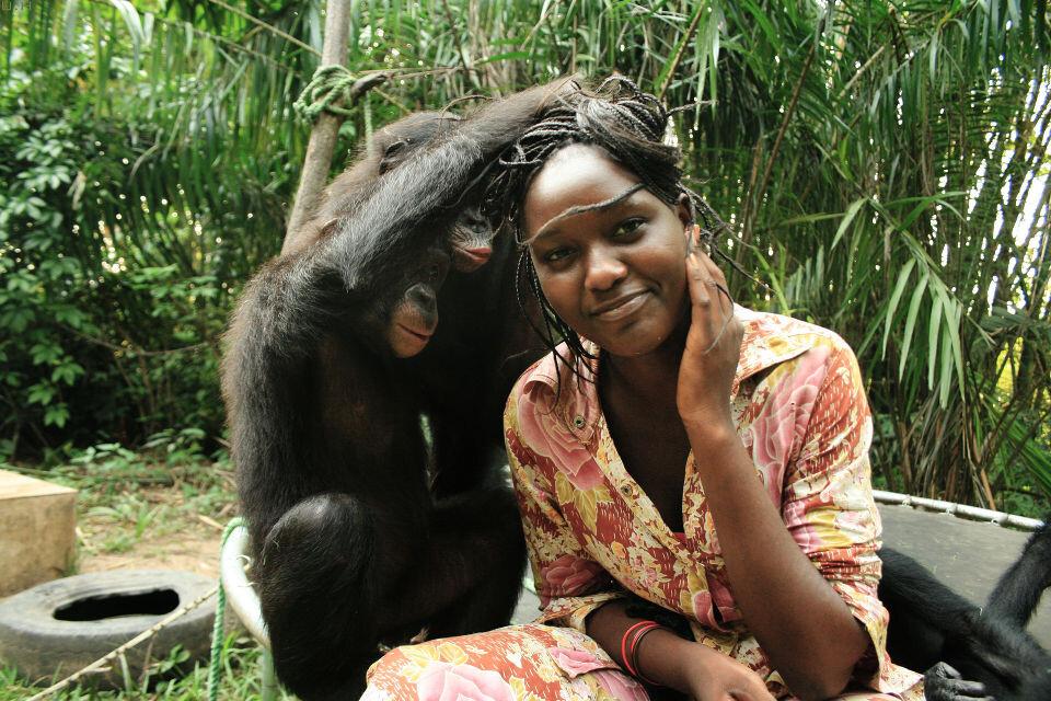 Les Mamas-32<br /> Sake, Katako & Mama Esperence@Nursery, Lola, Kinshasa<br /><br /> 孩子们早已把Mama当成是自己同类,所以他们向妈妈表达爱意的方式自然是──理毛。