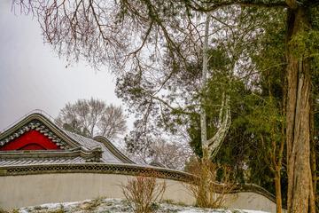 北海公园雪景(1)2019-2-14 a