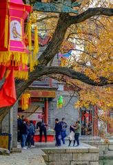 颐和园苏州街(2)2018-11-12 b