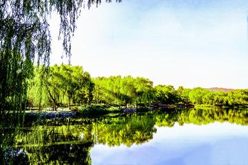 圆明园公园秋景(1)2018-10-23 g