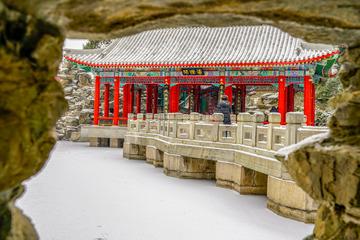 北海公园雪景(1)2019-2-14 d