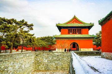 天坛公园雪景(2)2019-2-12 f