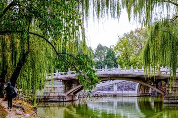 颐和园后溪(10)2020-10-30 c