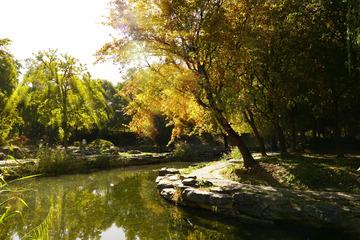 圆明园公园秋景(1)2018-10-23 e