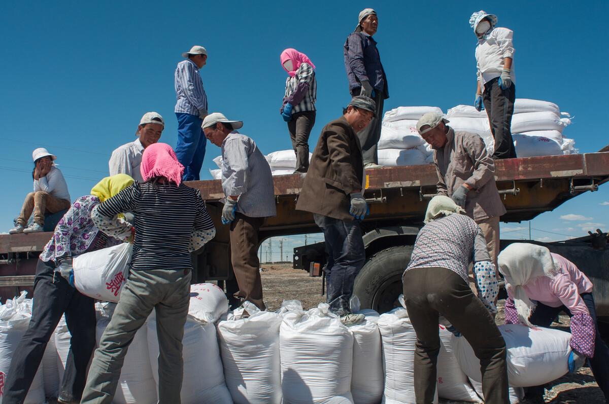 2012年7月31日青海格尔木市察尔汗,搬运工把一袋50公斤重的氯化镁搬到车上可以挣4角钱。