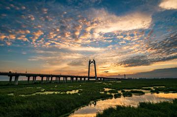 大庆湿地大桥