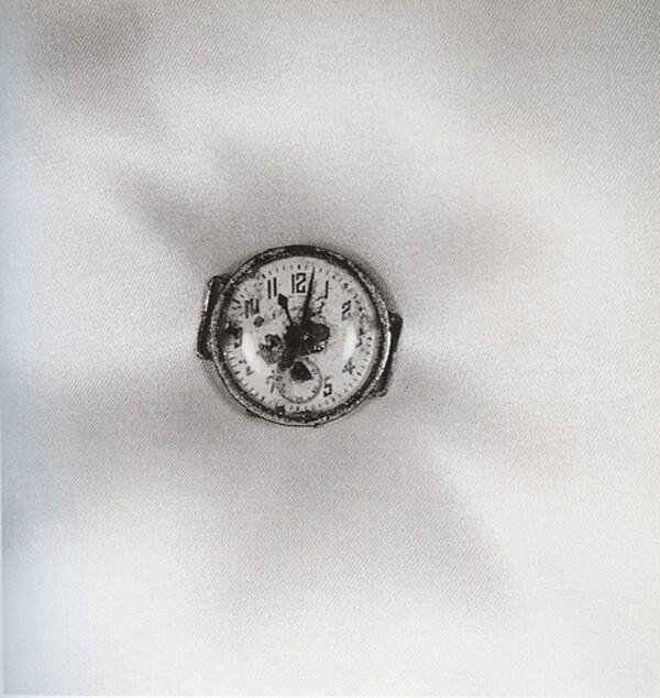 18753274.jpg