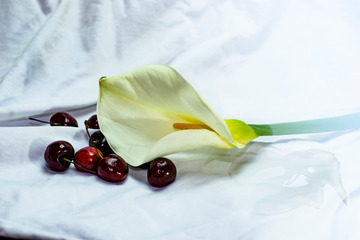 水果与鲜花