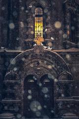 圣索菲亚大教堂的鸽子
