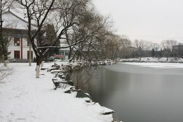 校园的雪景-2