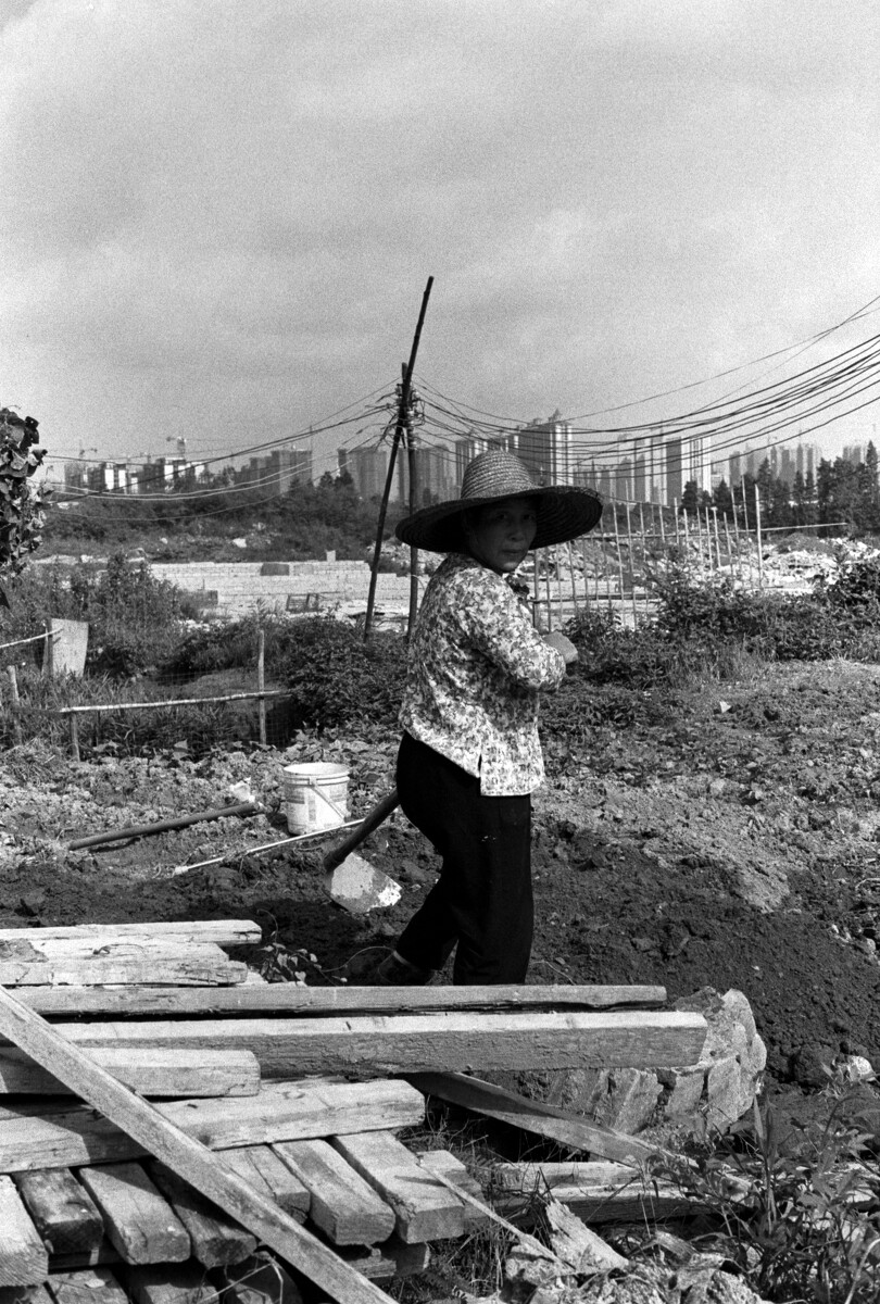 勤劳的村民,哪怕是小小的一块的地都要种上些农作物