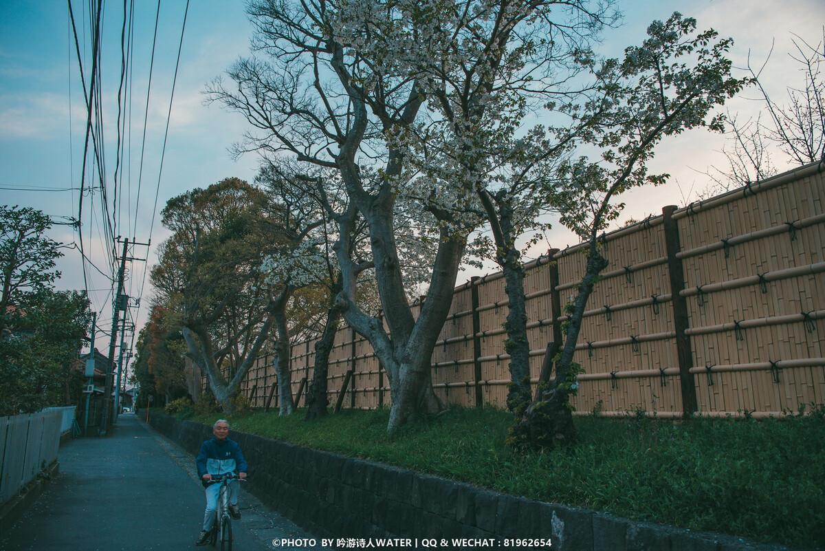 日本名模性感写真引骚动 长谷川润各类美照大盘点