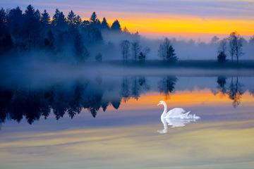 misty_lake_by_burtn-d5m4i5ma