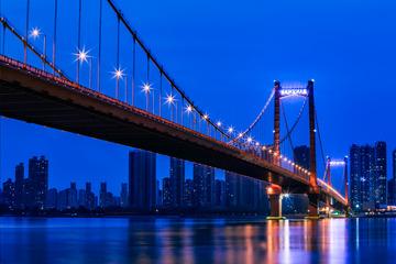 夜幕下的鹦鹉洲大桥