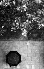 下雨天?️
