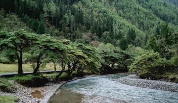 大山下的小溪