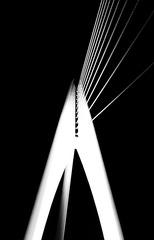 欣赏大桥的其他方式