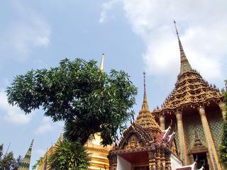 曼谷之旅2 (34)