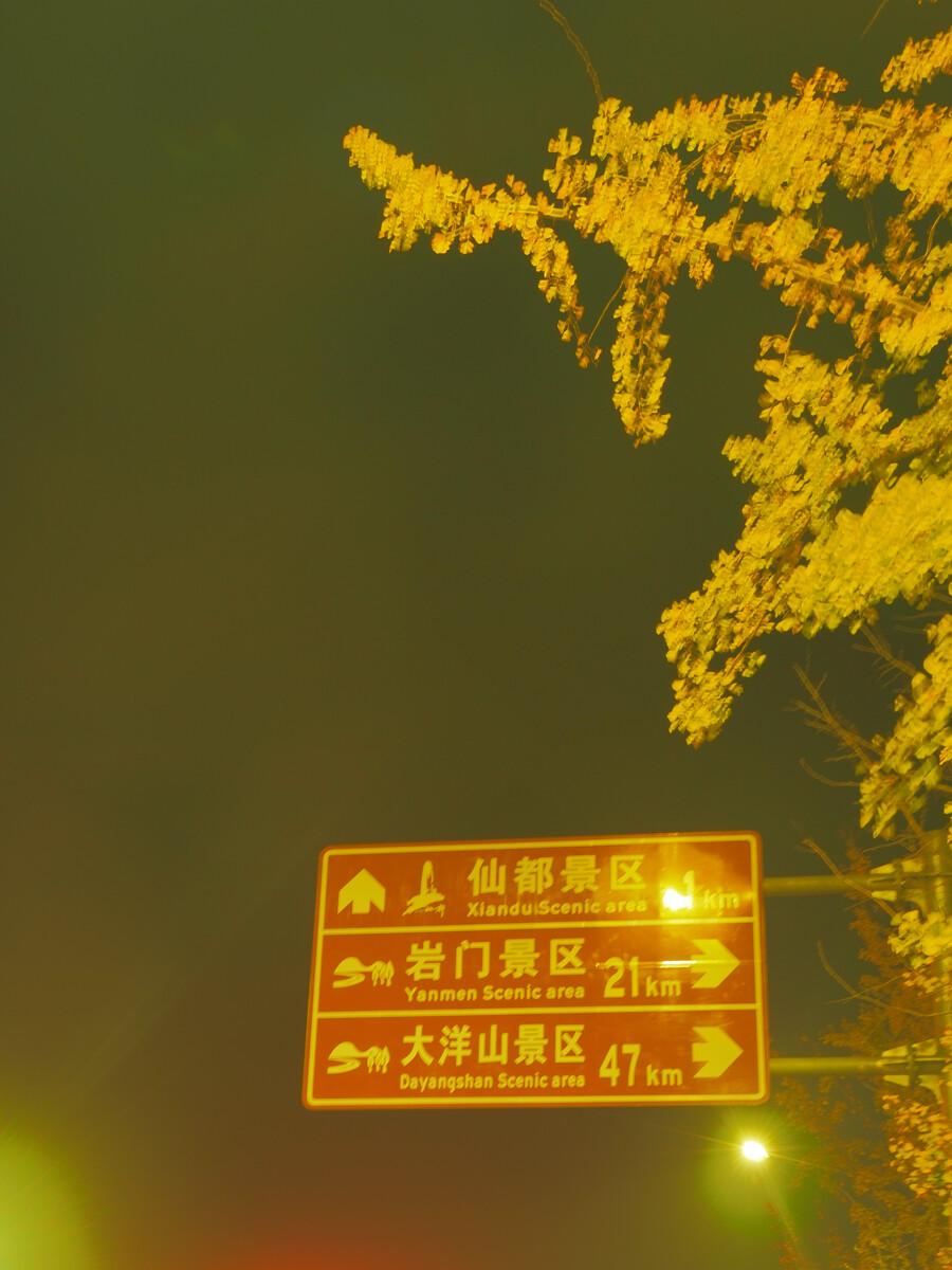 爱而乐国际产品有哪些-建设生态文明美丽中国 环生学子十九大献上大礼