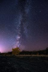 银河的尾巴