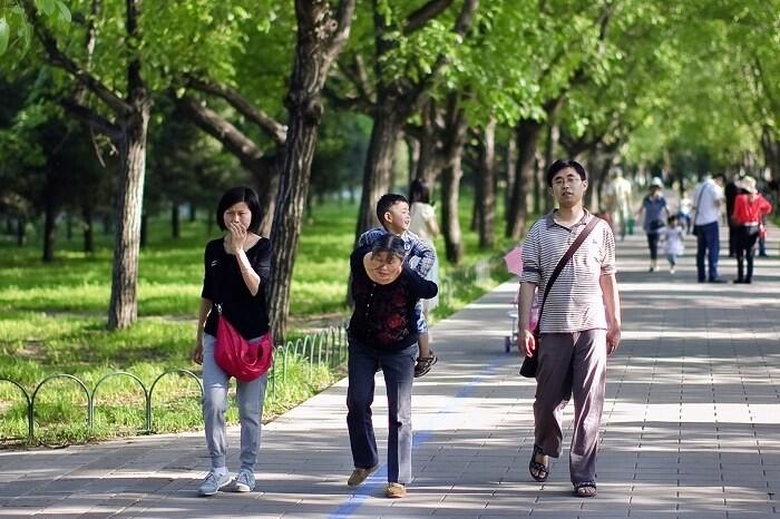 中国式家庭<br /> 我不知道我要说什么,有一丝温馨有一丝伤感,有一些无奈也有不少忧虑。