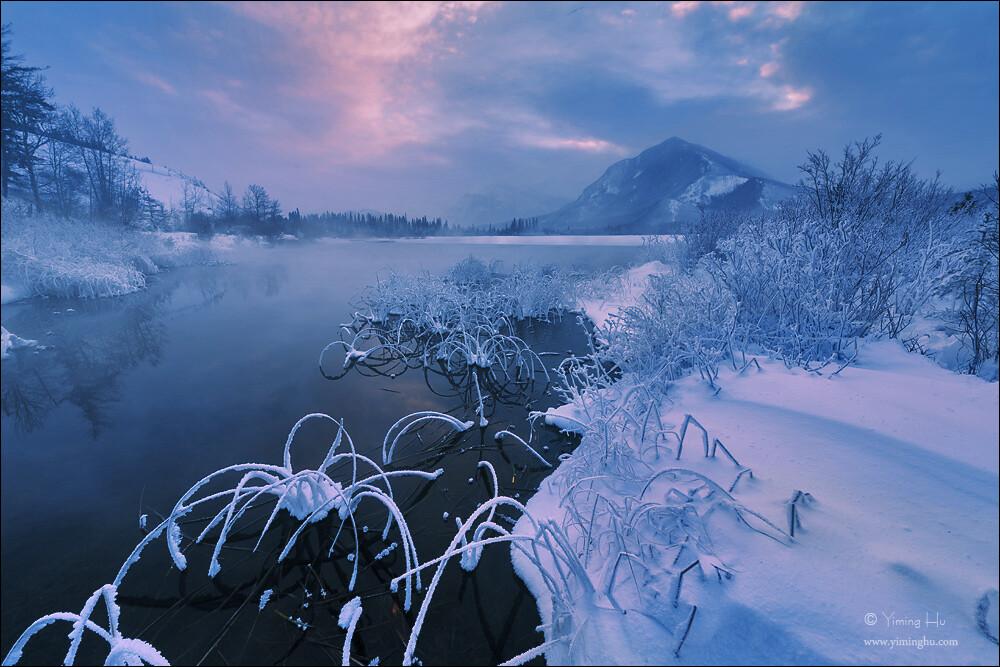 在这个极其寒冷的清晨,从附近温泉升起的水蒸气冻结在周边的水草和树枝上,形成了美丽的雾凇。
