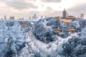 鸡鸣寺|雪