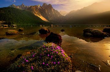 措普湖的清晨