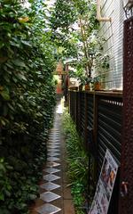 静静的小巷