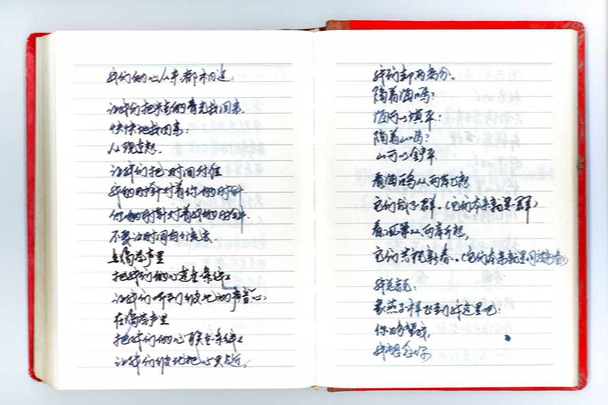11. 年份未知,大寨村,日记本。