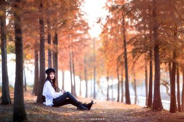 广州的晚秋